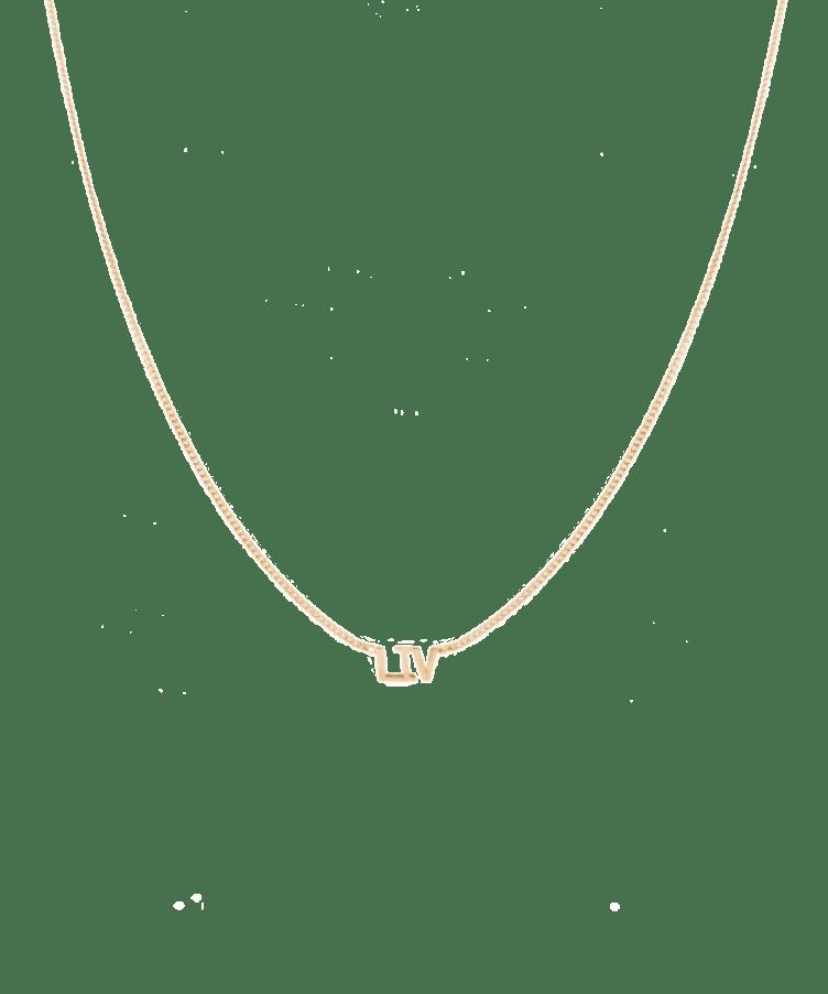 Name Necklace 14K-Solid 14K Rose Gold-Large: 44 CM