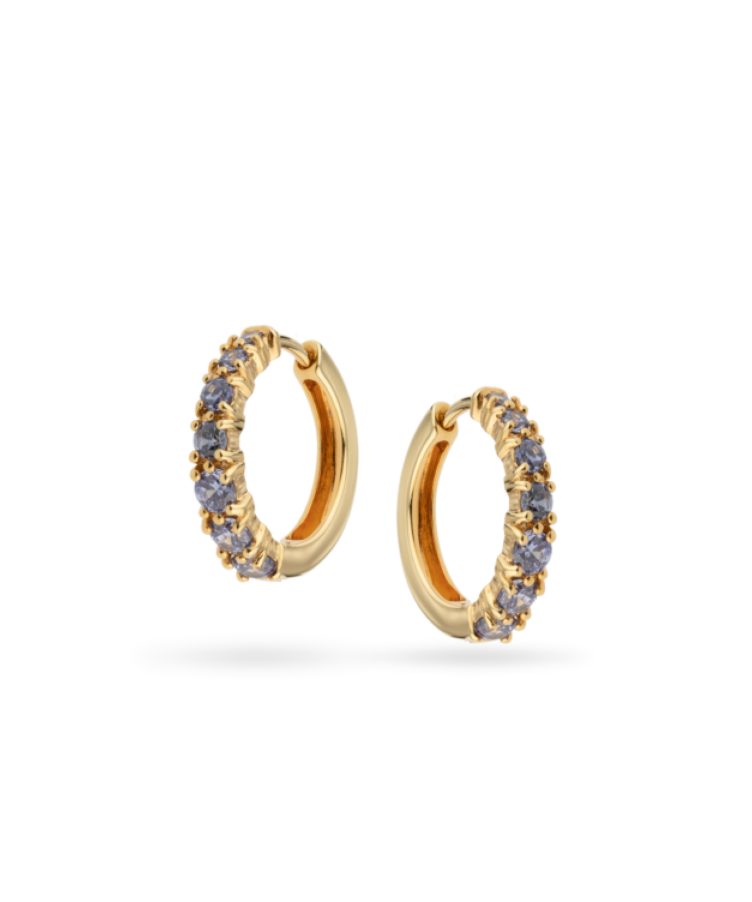 Birthstone Earrings-Plated 14K Yellow Gold-December