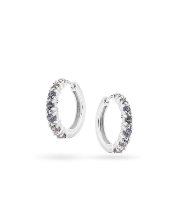 Birthstone Earrings-925 Sterling Silver-December